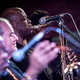 fred wesley and the new jbs (usa)